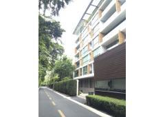 Penthouse at Ficus Lane