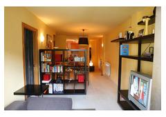 Very comfortable apartment in Andorra