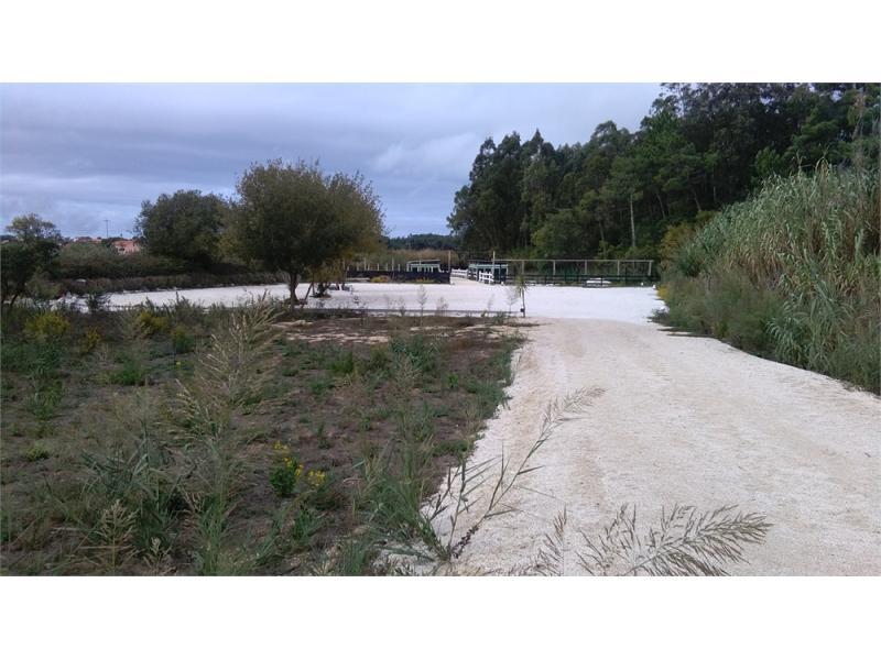 Splendid Land to Farm in Casal Vau between Campo and Tornada