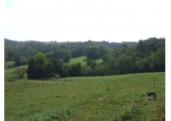 A HORSE?- OF COUSE! Fabulous family home on 17.5 ha in sunny SW France