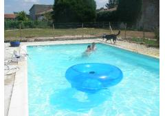 2 Cottages with a swimming pool, boules & table tennis to enjoy!