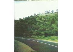 South Australia Land for Sale