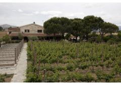 Hacienda Madrid, your estate between nature and culture