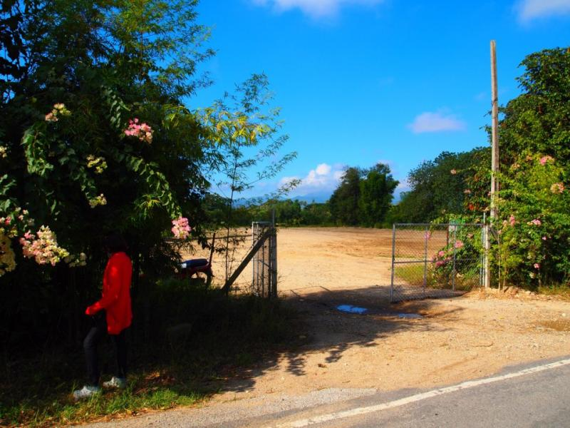 The best land for sale