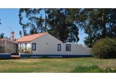 Rent,holidays,House,Portugal,Alentejo,Milfontes,surf,camp,beach,cheap, family