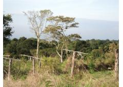 10 HECTARES TITLED