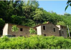 stone build ancient olive cruscher in versilia