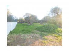 Plot - Building permited  in Algarve - São Bras de Alportel